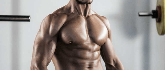 Best Body Supplement For You