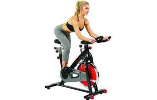 recumbent bike reviews