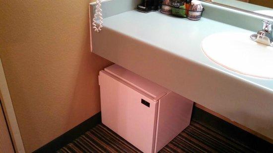 buying a mini fridge