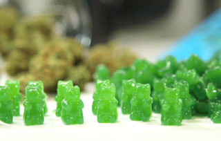 What is about cannabis weed gummies?