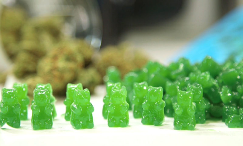 cannabis weed gummies